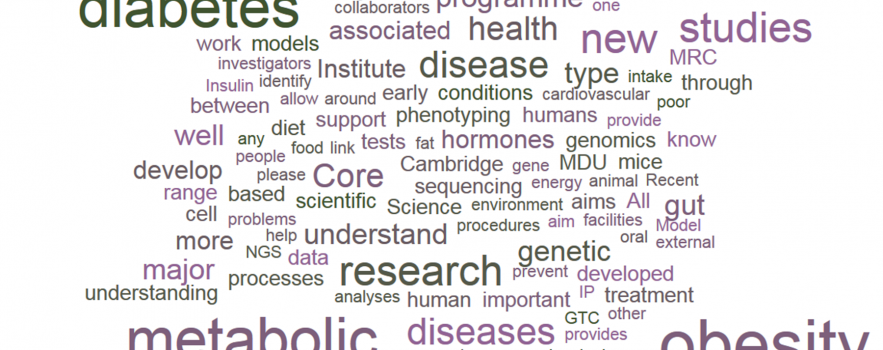 Wordle including words associated with metabolism research and metabolic health