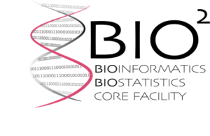 Bioinformatics and biostatistics core facility logo