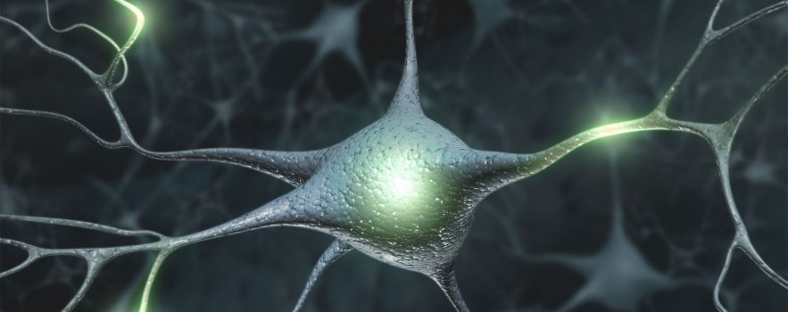 cartoon image of a branched brain cell has light spots to indicate electrical activity