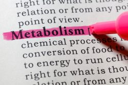 The word metabolism is highlighted in a dictionary