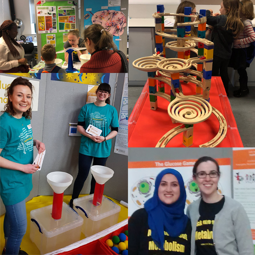 Images from Cambridge Science Festival hands on events