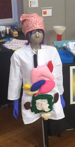 A silver-faced mannequin wears a lab coat with brightly coloured internal organs attached